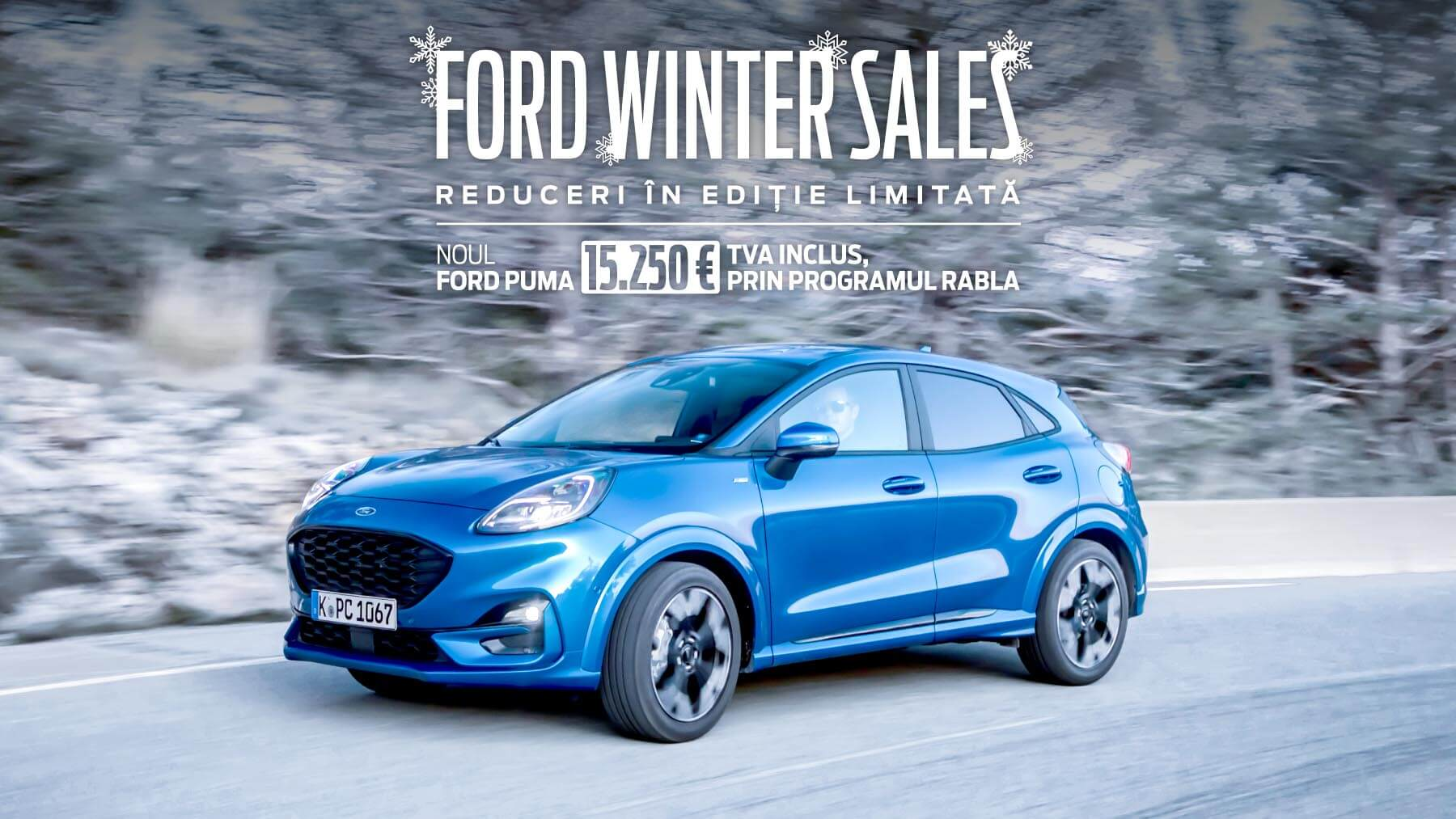 Ford Winter